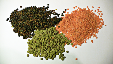 https://commons.wikimedia.org/wiki/File:3_types_of_lentil.jpg