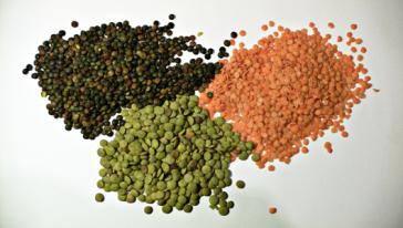 https://commons.wikimedia.org/wiki/File:3_types_of_lentil.jpg